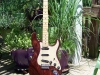James O'Neal - James' swamp ash strat 2