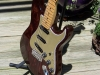 James O'Neal - James' swamp ash strat 4
